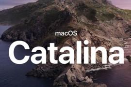 通过VM快速安装macOS Catalina (10.15)版虚拟机