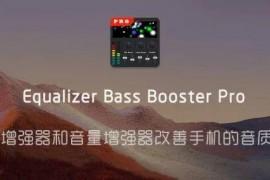 Equalizer Bass Booster Pro 低音均衡器专业版 低音增强器和音量增强器、改善手机的音质