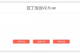 豆丁当当v.25-最新文库下载工具,绿色免安装