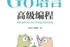 开源书籍-《Go 语言高级编程》