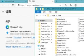 Microsoft Edge v85.0.564.63 Stable 特别绿色版 基于谷歌Chromium内核