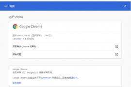 [21416期]Google Chrome v89.0谷歌浏览器增强版下载