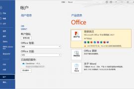 [21560期]微软 OFFICE 2021 RTM 专业正式版镜像
