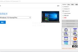 Windows ISO Downloader v8.16 光盘映像下载工具