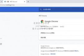 Google Chrome 80.0.3987.116 绿色增强版