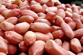 秋季养生小常识:别错过五款纯天然补品
