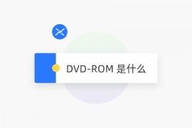 DVD-ROM 是什么