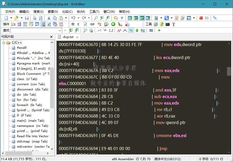 EmEditor v19.8.5 正式特别版